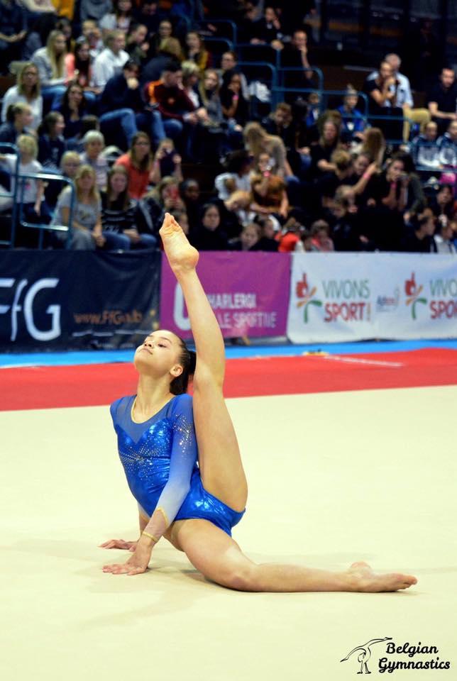 artistisk gymnastik grenar